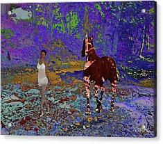 Fantasy Forest Acrylic Print