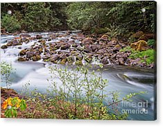 Acrylic Print featuring the photograph Fast Water by Craig Leaper