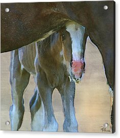 Feeling Secure In Digital Watercolor Acrylic Print
