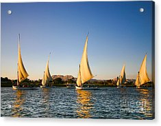 Felucca On The Nile River Acrylic Print