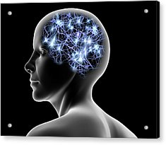 Female Head And Nerve Cells, Artwork Acrylic Print by Pasieka
