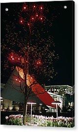 Festival Lights Acrylic Print by Raymond Kleboe