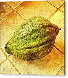 Figleaf Gourd On Tile Acrylic Print by Keith Cassatt