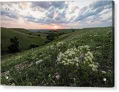 Acrylic Print featuring the photograph Finally, Spring by Scott Bean