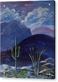 Finger Rock Evening, Tucson Acrylic Print