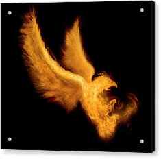 Fire Bird Acrylic Print by -asi