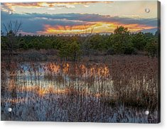 Acrylic Print featuring the photograph Fire In The Sky Over The Pines by Kristia Adams