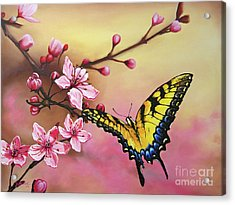 First Blossom Of The Morning Acrylic Print