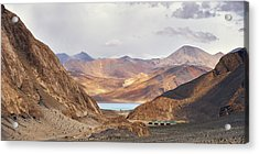 Acrylic Print featuring the photograph First Glimpse by Whitney Goodey