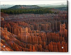 Acrylic Print featuring the photograph First Light On The Hoodoo Inspiration Point Bryce Canyon National Park by Nathan Bush