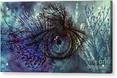 Fisheye Acrylic Print