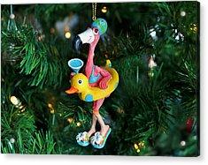 Flamingo Swimmer Acrylic Print