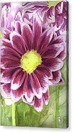 Flor Acrylic Print