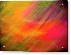 Flowers In Abstract Acrylic Print
