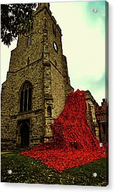 Flowing Poppies Acrylic Print