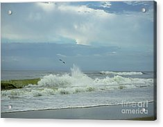 Fly Above The Surf Acrylic Print