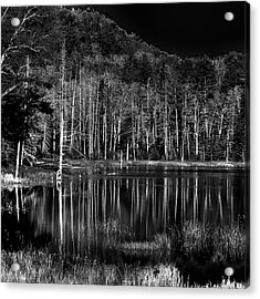 Acrylic Print featuring the photograph Fly Pond Reflection by David Patterson