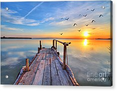 Flying By The Lake Acrylic Print by Kesipun