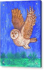 Flying Owl Acrylic Print