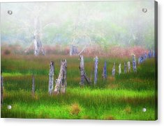 Foggy Dreams Acrylic Print