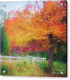 Foliage By The Farm Acrylic Print