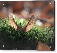 Forest Angel Acrylic Print