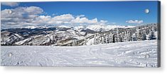 Forest Covered By Snow With Skiing Acrylic Print
