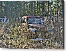 Forest Finds Acrylic Print