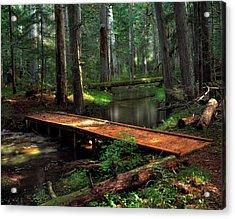 Forest Foot Bridge Acrylic Print by Leland D Howard