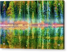Acrylic Print featuring the photograph Forest Mirrored  by Dee Browning