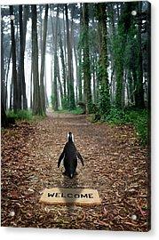 Forest Penguin Acrylic Print by Richard Newstead