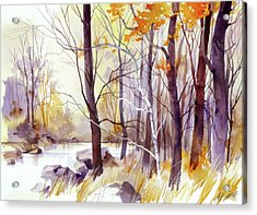 Forest Pond Acrylic Print by Art Scholz