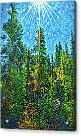 Acrylic Print featuring the digital art Forest Sunlit Grace by Joel Bruce Wallach