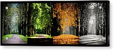 Four Seasons Acrylic Print by Sören Lubitz Photography