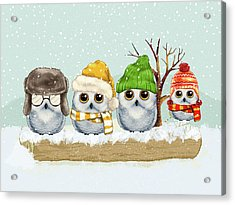 Four Winter Owls Acrylic Print