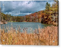Framed Lake Acrylic Print