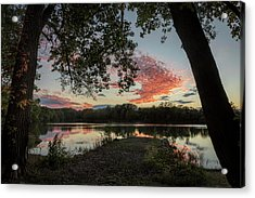 Acrylic Print featuring the photograph Framed by Scott Bean
