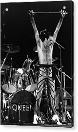 Freddie Mercury Acrylic Print by Express Newspapers