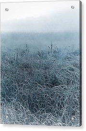 Frigid Morn Acrylic Print
