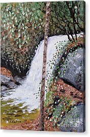 Frolictown Falls Acrylic Print