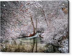 Acrylic Print featuring the photograph Frosty Pond by Fiskr Larsen