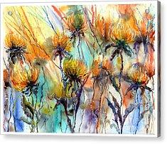 Frozen Chrysanthemums Acrylic Print