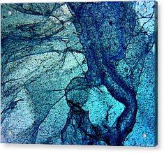 Frozen In Blue Acrylic Print