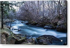 Frozen River Surrounded With Trees Acrylic Print