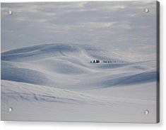 Frozen Winter Hills Acrylic Print