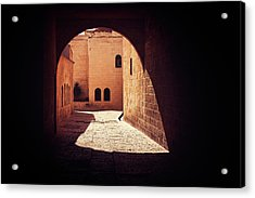 Acrylic Print featuring the photograph Fugitive by Marji Lang