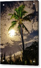Full Moon Palm Acrylic Print