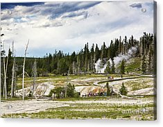 Acrylic Print featuring the photograph Fuming Geysers In Yellowstone National Park by Tatiana Travelways