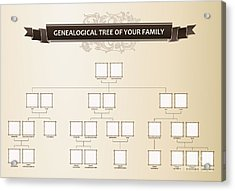 Genealogical Tree Of Your Family Acrylic Print
