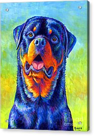 Gentle Guardian Colorful Rottweiler Dog Acrylic Print